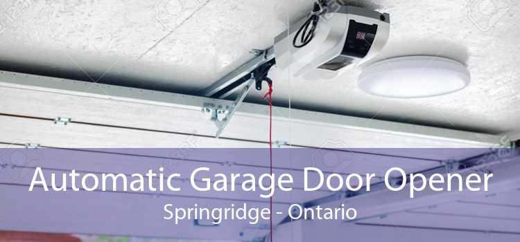 Automatic Garage Door Opener Springridge - Ontario