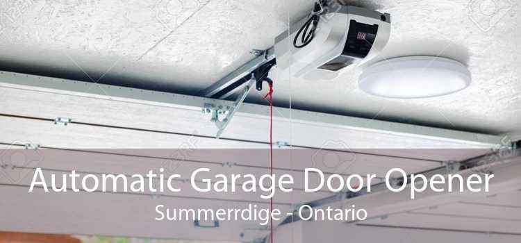 Automatic Garage Door Opener Summerrdige - Ontario