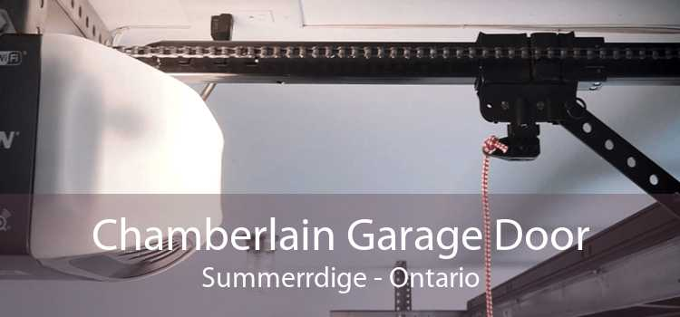 Chamberlain Garage Door Summerrdige - Ontario