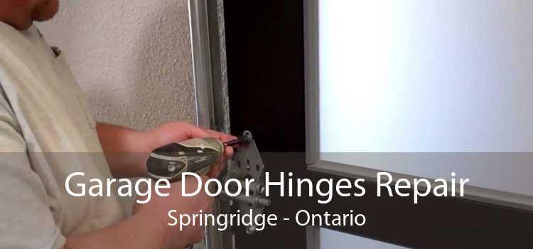 Garage Door Hinges Repair Springridge - Ontario