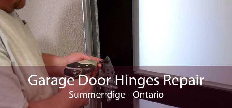Garage Door Hinges Repair Summerrdige - Ontario