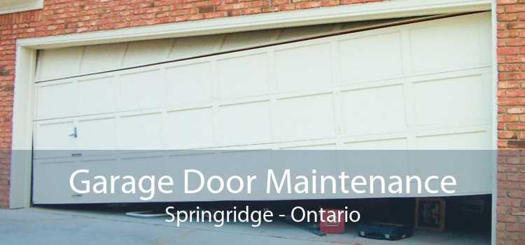 Garage Door Maintenance Springridge - Ontario