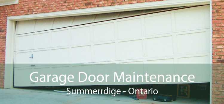 Garage Door Maintenance Summerrdige - Ontario
