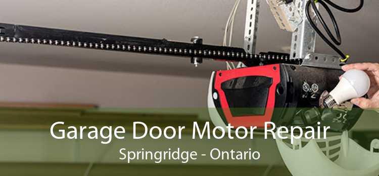 Garage Door Motor Repair Springridge - Ontario
