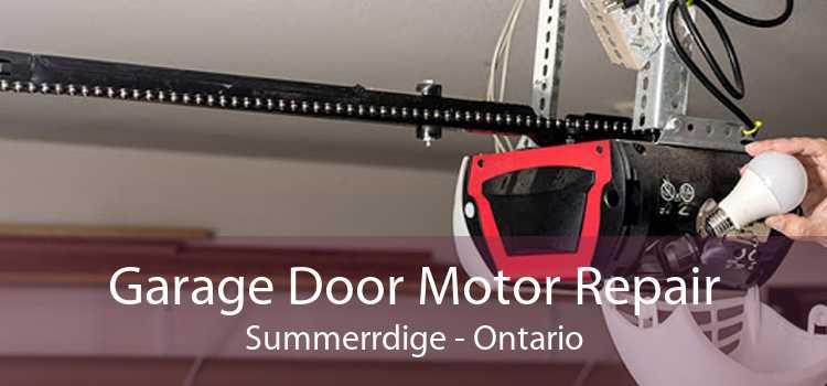 Garage Door Motor Repair Summerrdige - Ontario