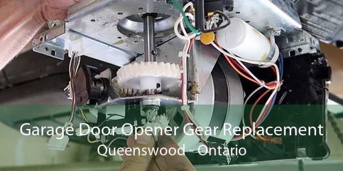 Garage Door Opener Gear Replacement Queenswood - Ontario