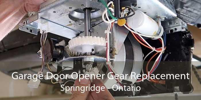 Garage Door Opener Gear Replacement Springridge - Ontario