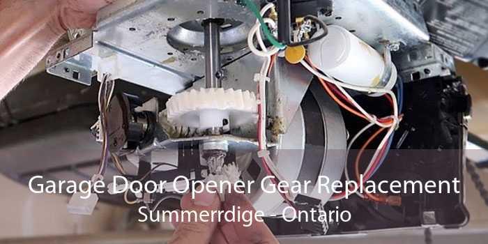 Garage Door Opener Gear Replacement Summerrdige - Ontario