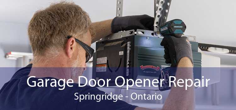 Garage Door Opener Repair Springridge - Ontario