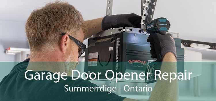 Garage Door Opener Repair Summerrdige - Ontario