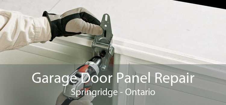 Garage Door Panel Repair Springridge - Ontario