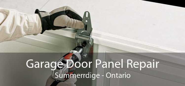 Garage Door Panel Repair Summerrdige - Ontario