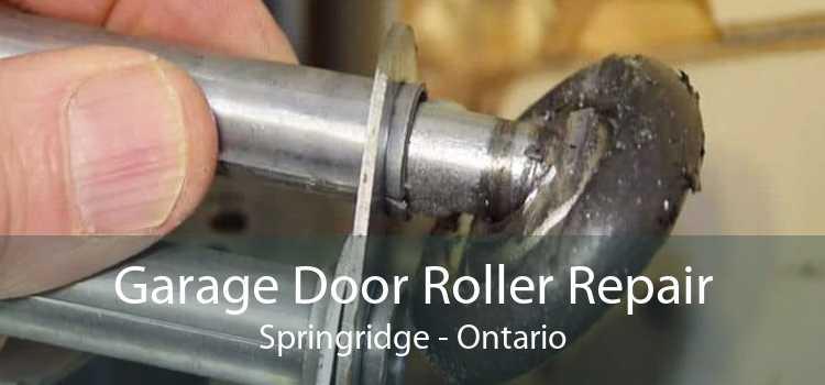 Garage Door Roller Repair Springridge - Ontario