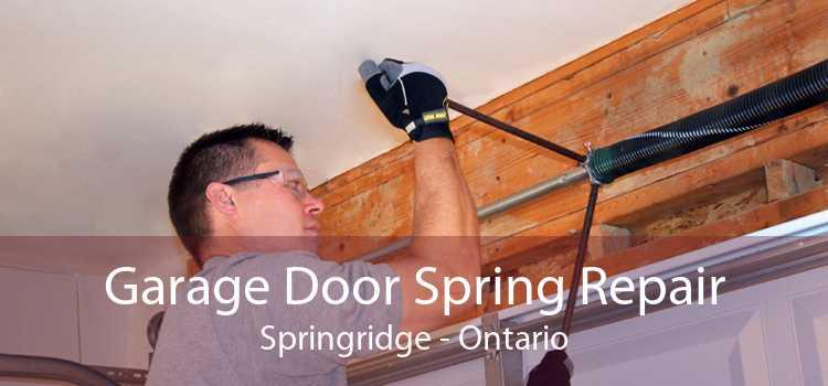 Garage Door Spring Repair Springridge - Ontario