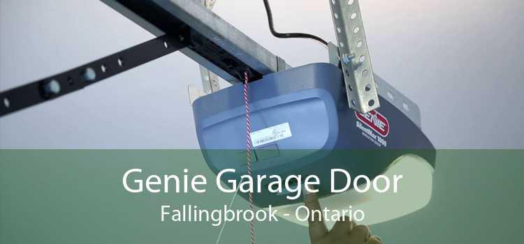 Genie Garage Door Fallingbrook - Ontario