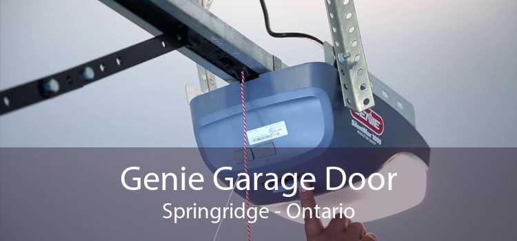 Genie Garage Door Springridge - Ontario