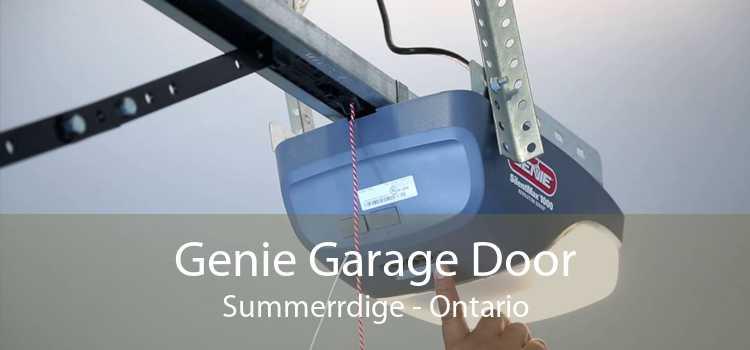 Genie Garage Door Summerrdige - Ontario