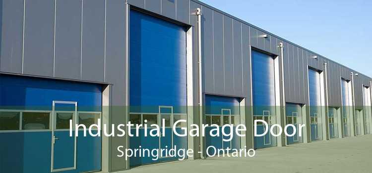 Industrial Garage Door Springridge - Ontario