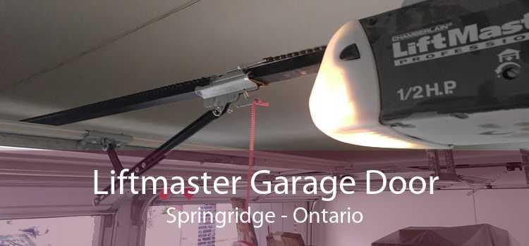 Liftmaster Garage Door Springridge - Ontario