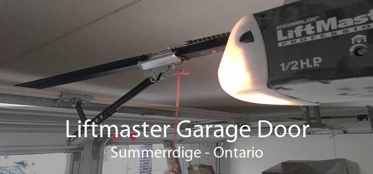 Liftmaster Garage Door Summerrdige - Ontario