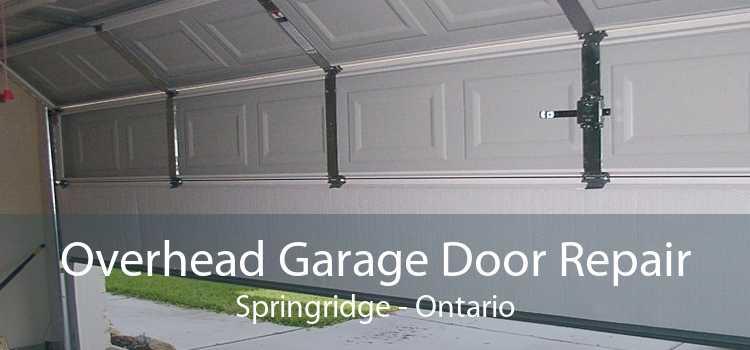 Overhead Garage Door Repair Springridge - Ontario