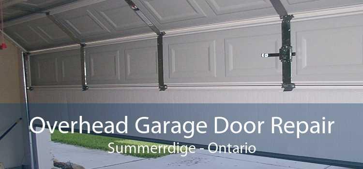 Overhead Garage Door Repair Summerrdige - Ontario