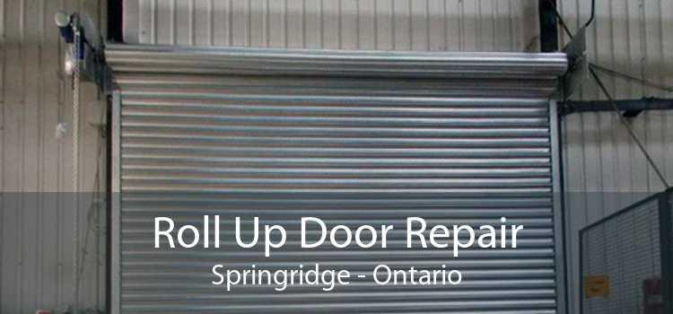 Roll Up Door Repair Springridge - Ontario