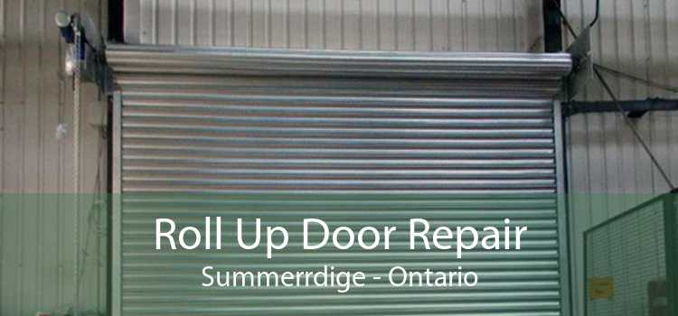 Roll Up Door Repair Summerrdige - Ontario